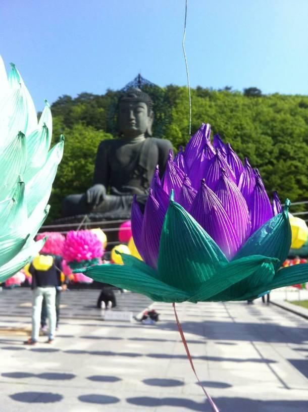 5 Buddha statue and free lotus-shaped lanterns