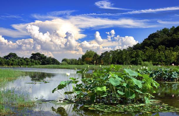 호수공원2