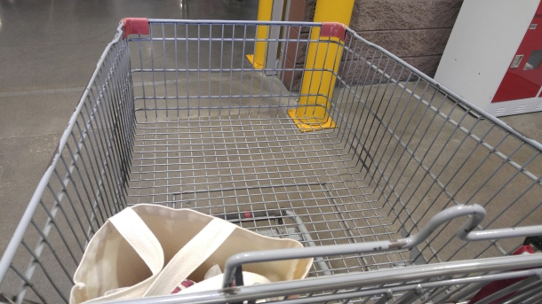 2 shopping cart