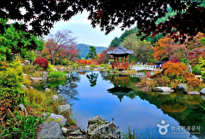 The Garden Of Morning Calm U2013 MyHUBS
