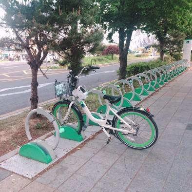 남인한1.jpg